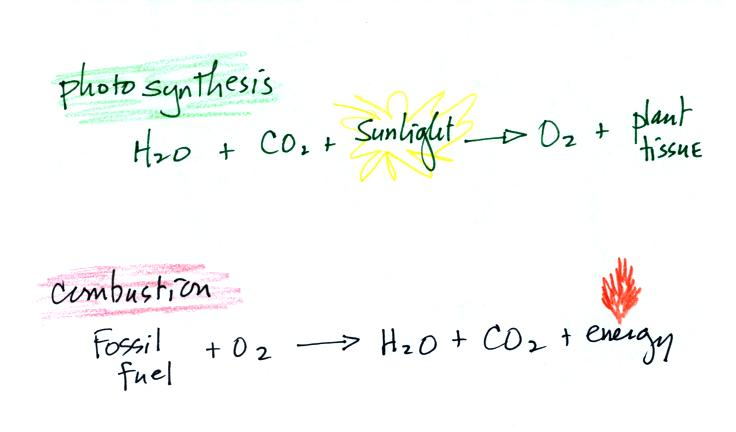 what is the equation for photosynthesis