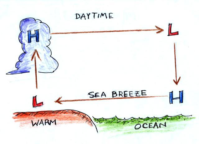 The Development Of A Thermal Circulation